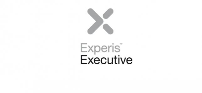 experis-executive1