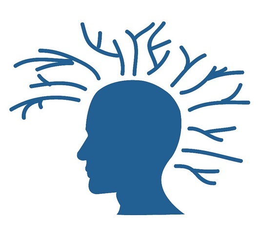 BrainMapOK